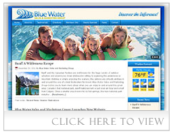 Blue Water Sales and Marketing Group