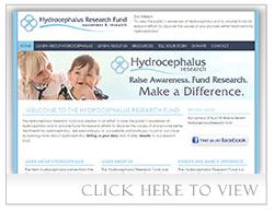 Hydrocephalus Research Fund